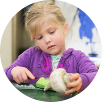Toddler Program at Greenspring Montessori School
