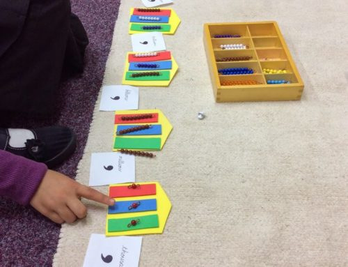 The Magic of Montessori Mathematics
