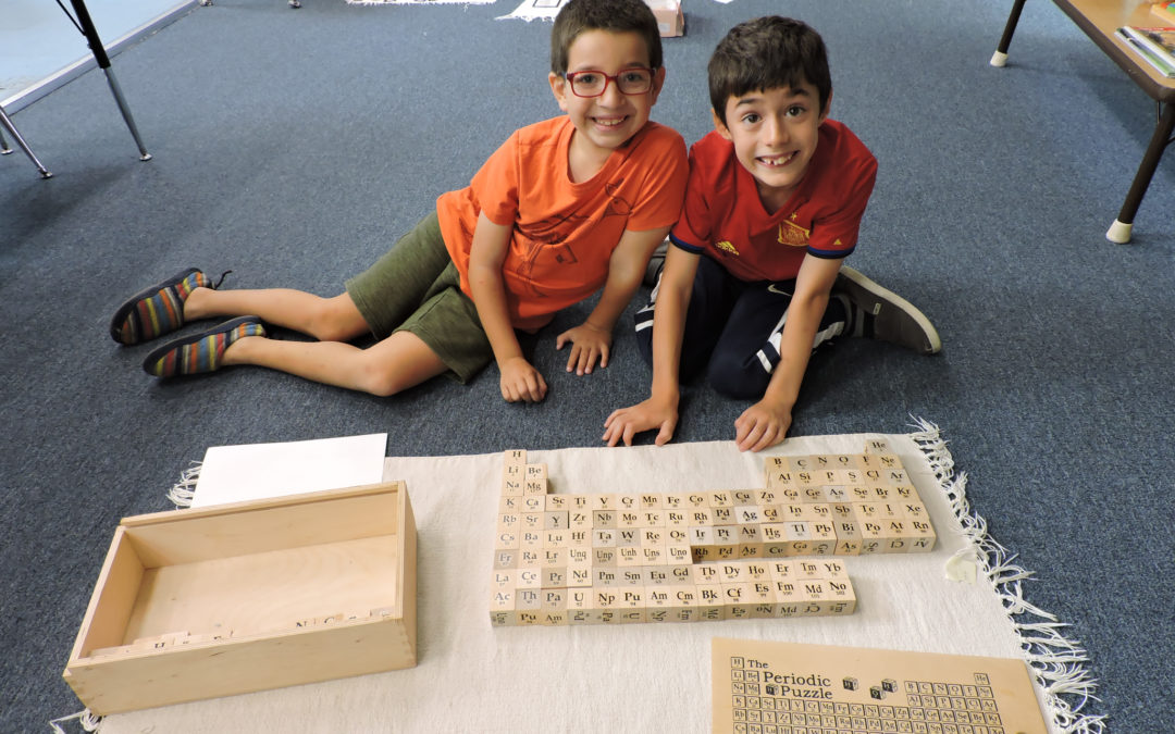 STEM Educational Initiatives and the Montessori Method
